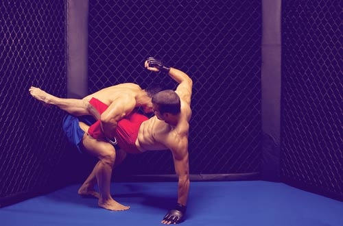 How to Become an MMA Fighter Who Won't Go Down: The Importance of Balancing and Changing Up Your Fight Game