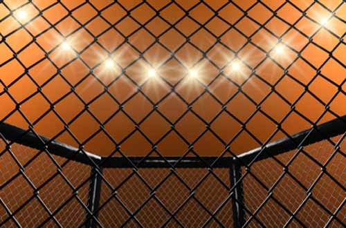 Professional MMA Advice: What is MMA Fighting and How to Become A Pro MMA Fighter