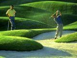 Golf Admin